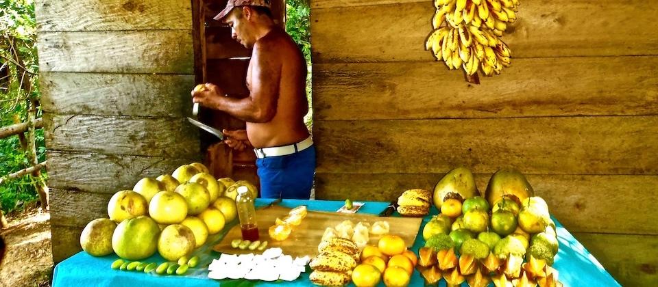 Fruta • Fruit bar • Bar à fruits – El Yunque – Baracoa