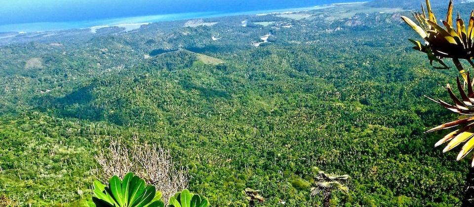 El Yunque – La cumbre • The Summit • Le sommet – Baracoa