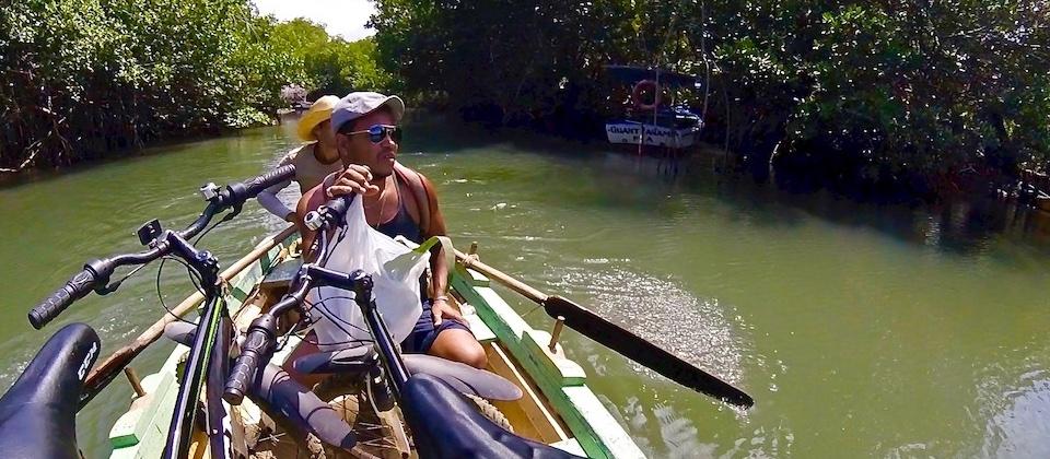 Manglar • Mangrove – Baracoa, Cuba