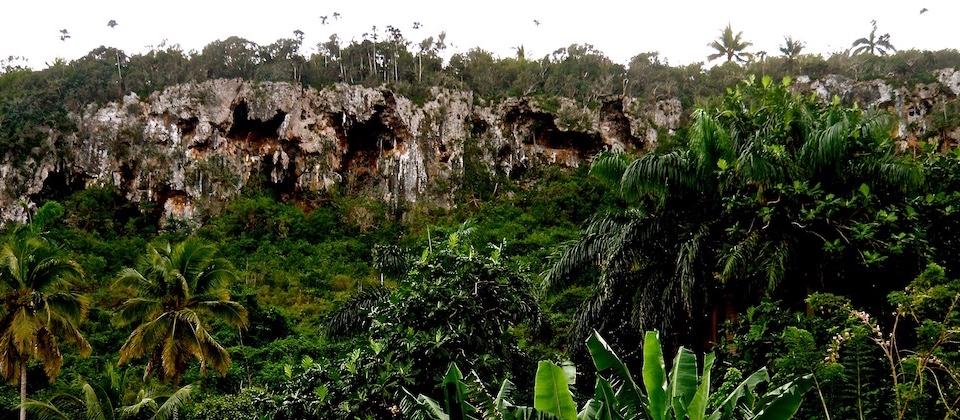 Cuevas • Caves • Cavernes – Yara, Baracoa, Cuba