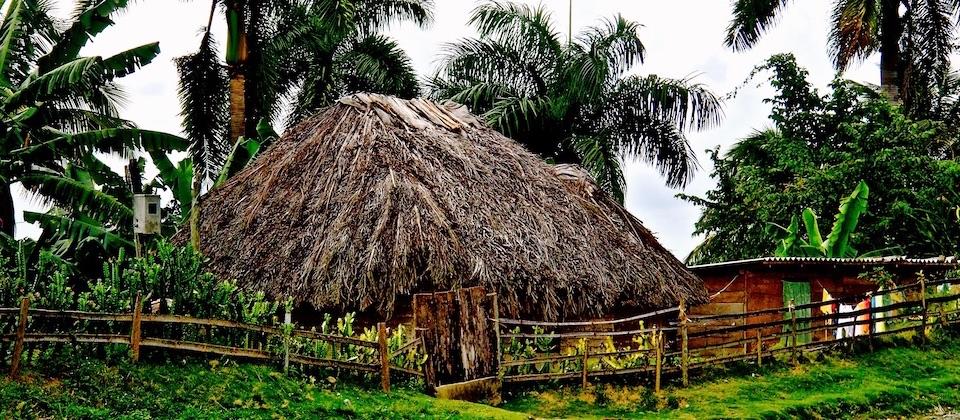 Techo taíno • Taino roof • Toiture taïna – Baracoa, Cuba