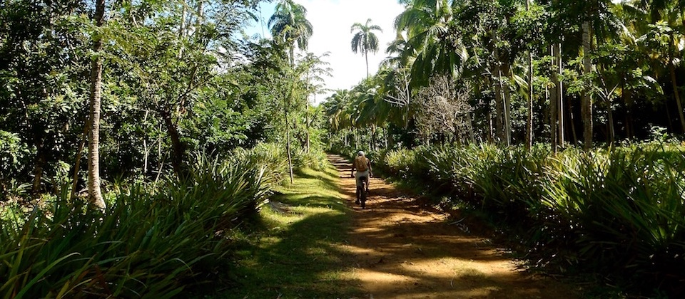 Cycling from Boma to Cajuajo – Baracoa
