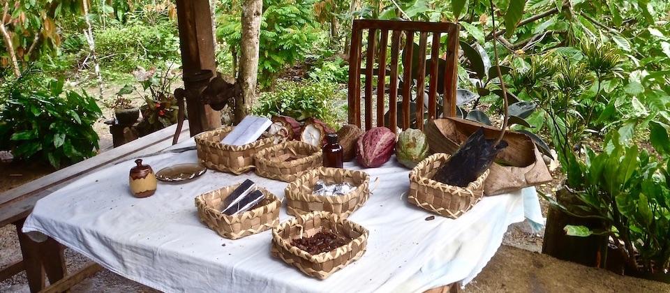 Cocoa presentation Baracoa Cuba