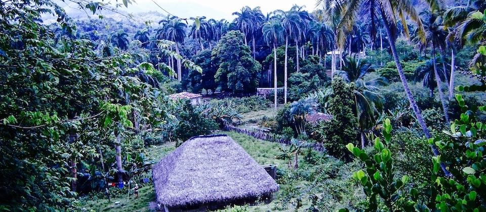 Community at Humboldt Park • Baracoa Cuba