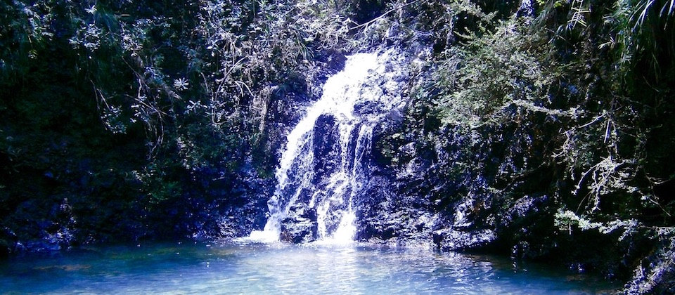 El Copal (Cascada) • Parc Humboldt Park • Baracoa Cuba