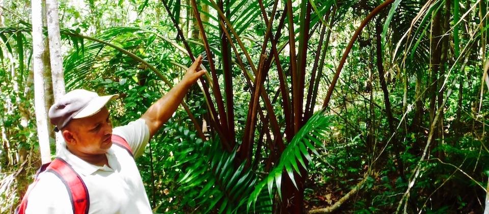 El Recreo (3)• Parc Humboldt Park • Baracoa Cuba