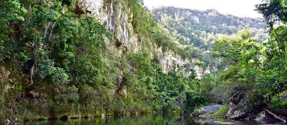 Still river at Yumurí Canyon • Baracoa Cuba
