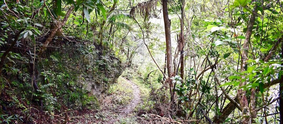 Sendero Trail • Cañón Yumurí Canyon • Baracoa Cuba