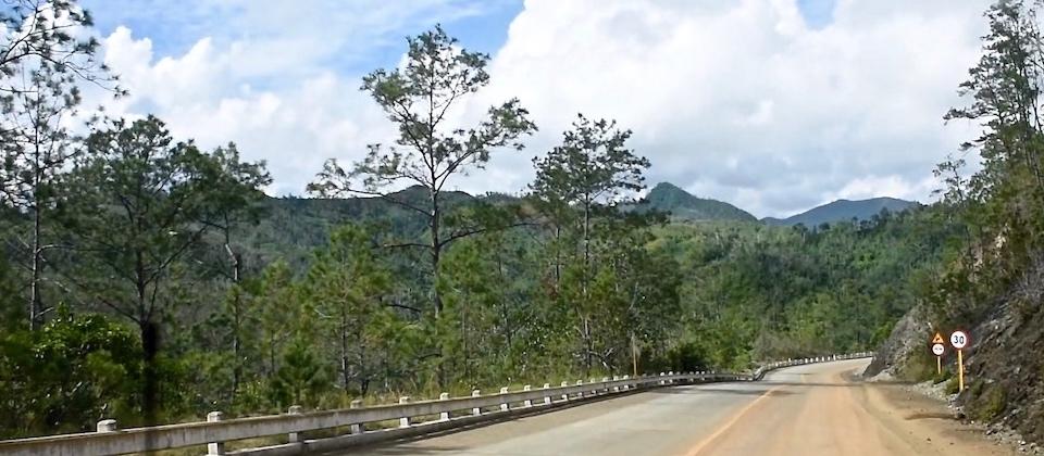 La Farola – pine trees from Santiago to Baracoa Cuba