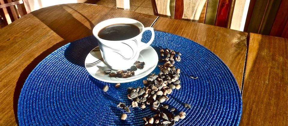 Freshly brewed organic coffee • Café orgánico • Villa Paradiso • Baracoa Cuba