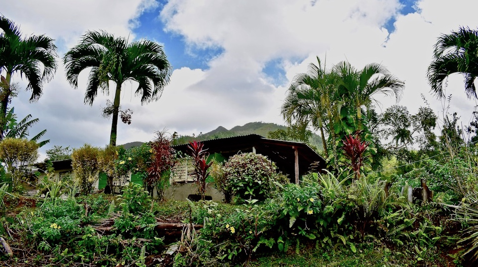 Maison paysanne • Quibijan • Toa • Baracoa Cuba