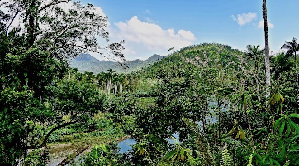 Rivière Quibijan • Baracoa Cuba