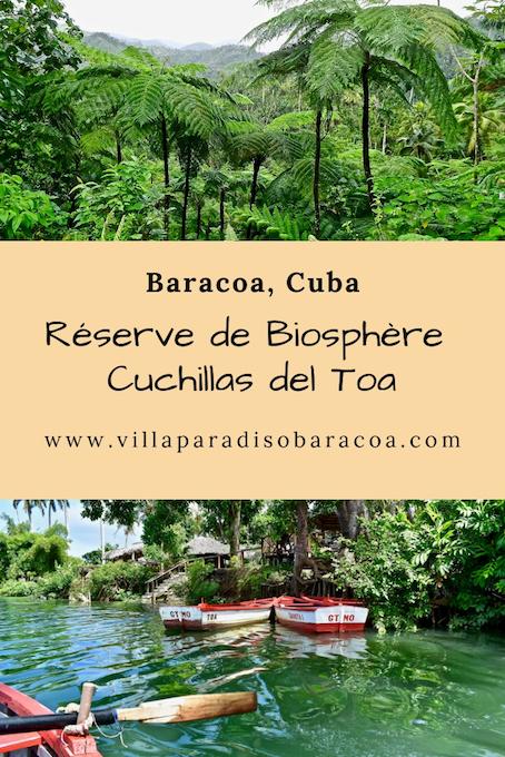Réserve de biosphère Cuchillas del Toa • Baracoa, Cuba
