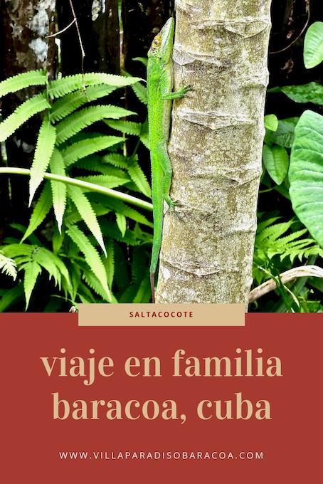 VIAJE EN FAMILIA AL RÍO TOA • BARACOA, CUBA