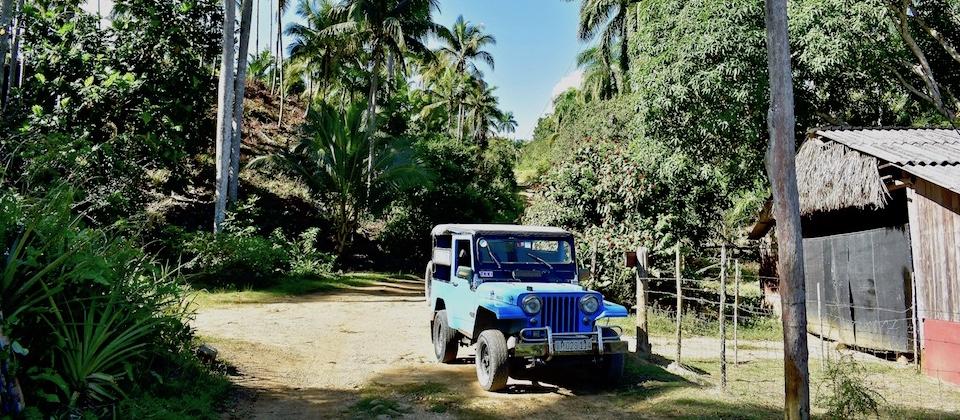 Ecological Farming • Humboldt Park •Baracoa, Cuba