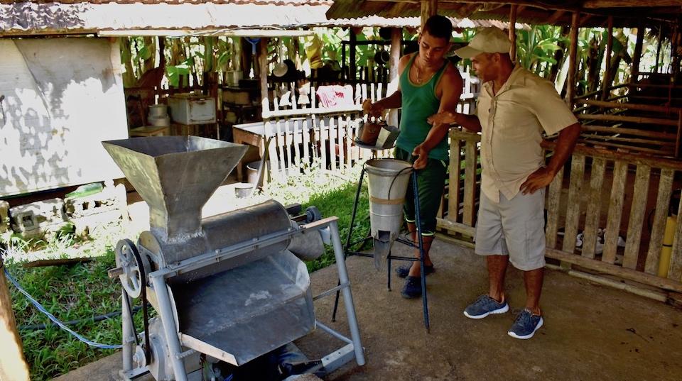 Ferme écologique • Parc Humboldt • Baracoa Cuba