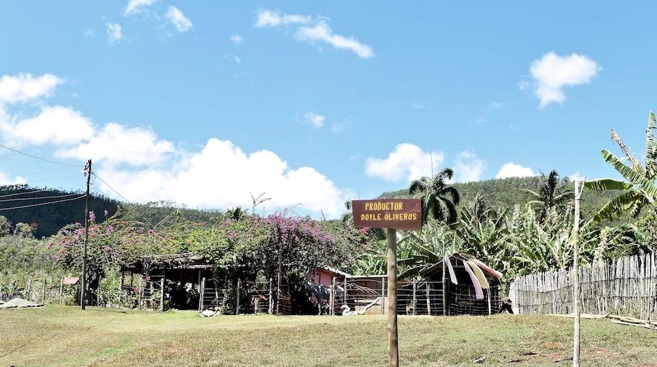 Ecological Farming Humboldt Park Baracoa Cuba