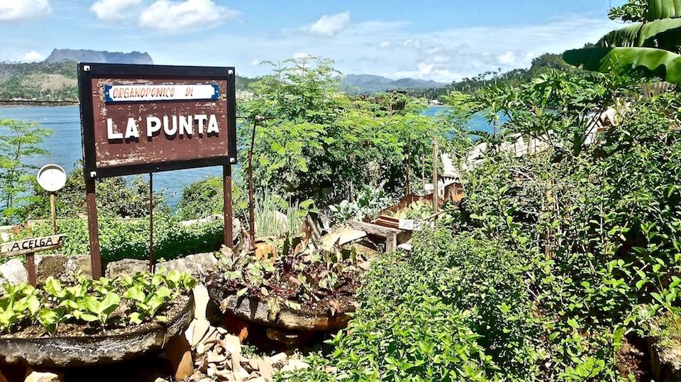 Organoponico Urban Farming • Baracoa Cuba