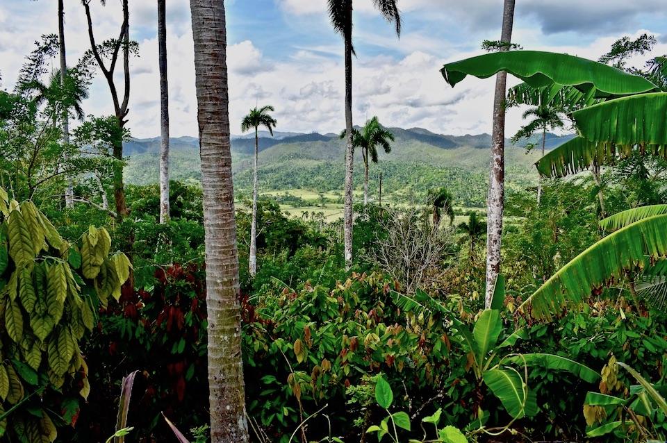 Cacao Tourisme Gourmand Gourmet Tourism Baracoa Cuba