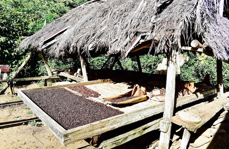 Cacao Café Cocoa Coffee Tradition Baracoa Cuba
