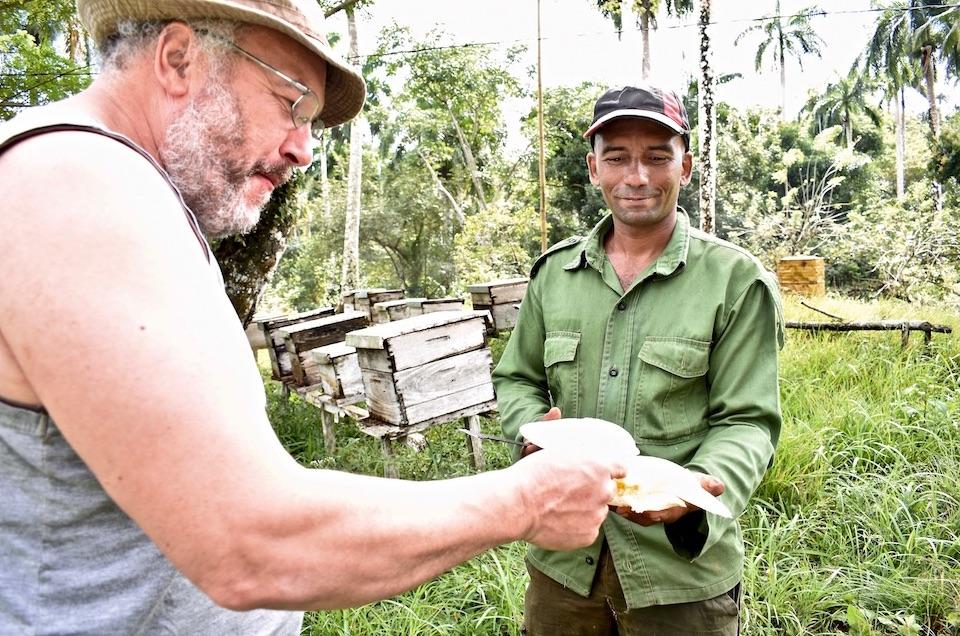 Miel AgriTourisme AgroTourisme Baracoa Cuba