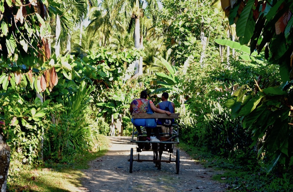 Tourisme Rural Tourism Baracoa Cuba