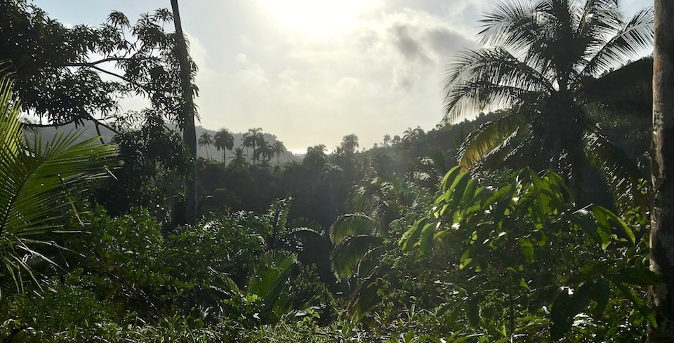 Daybreak • Baracoa • Cuba