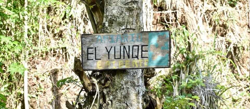 Colmenar El Yunque Baracoa Cuba