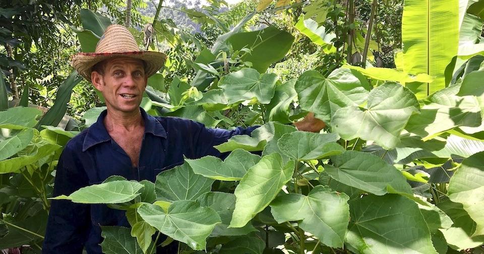 Eriberto Sourt Apiculteur Baracoa Cuba Miel Honey