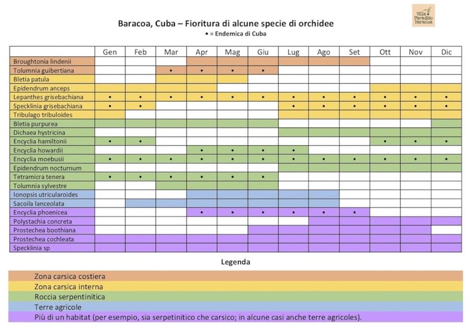 Baracoa Cuba Calendario Orchidee