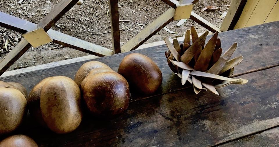 Best Authentic Cuban Food Baracoa