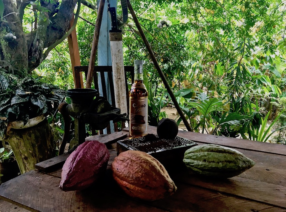 Best agrotourism experiences Cuba Baracoa agritourisme agroturismo agriturismo Cacao