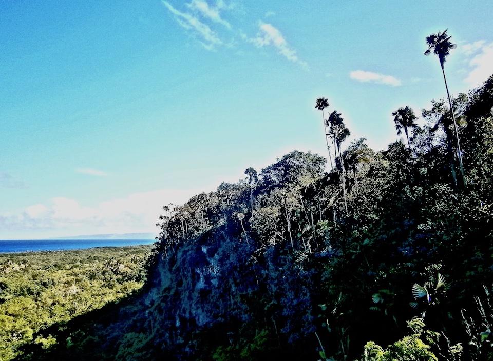 Hiking • Tropical Karst • Cuba • Baracoa • Yara-Majayara
