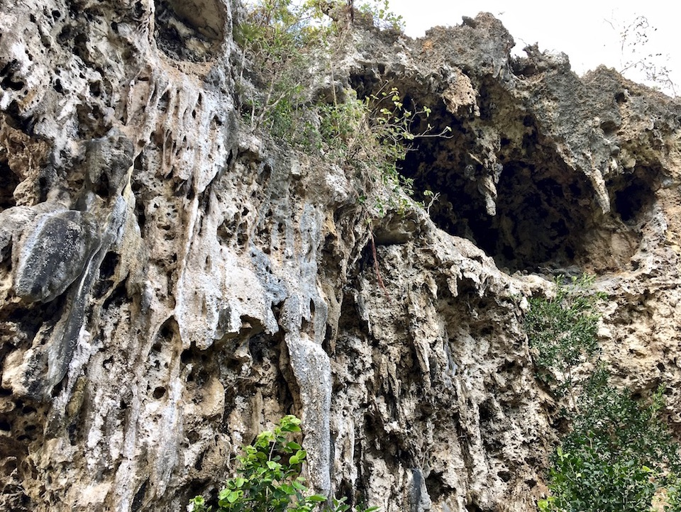Eastern Cuba Tropical Karst Hiking • Excursionismo • Randonnée