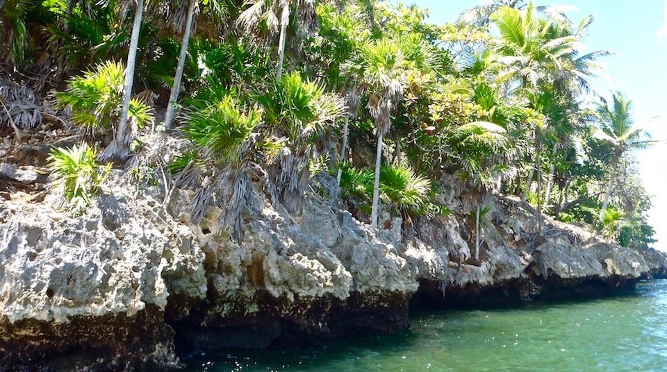 Taco Bay Tropical Karst • Alexander Humboldt National Park • Baracoa Cuba