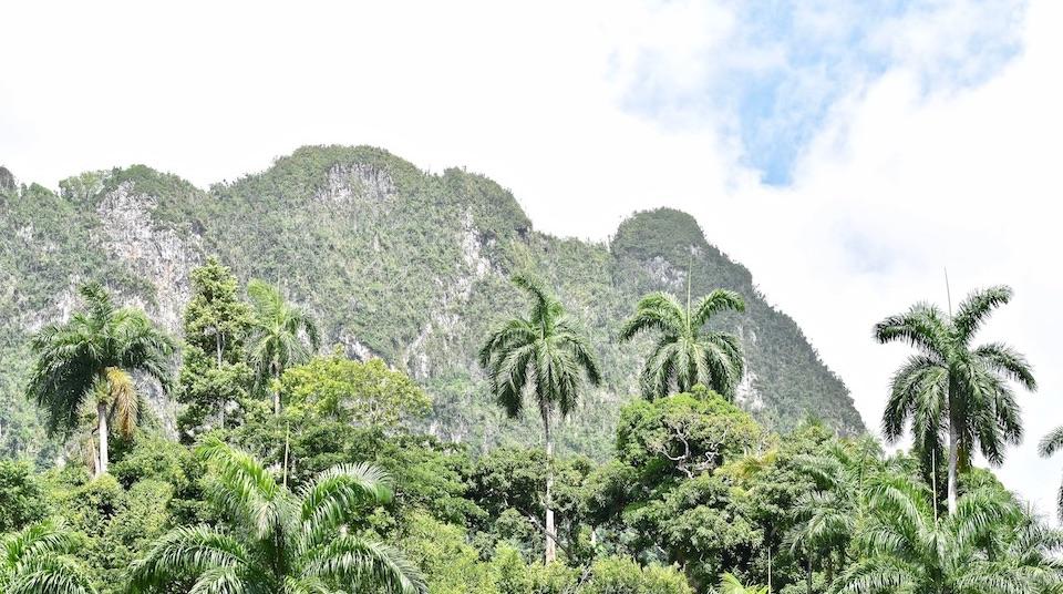 Eastern Cuba Tropical Karst El Yunque Baracoa