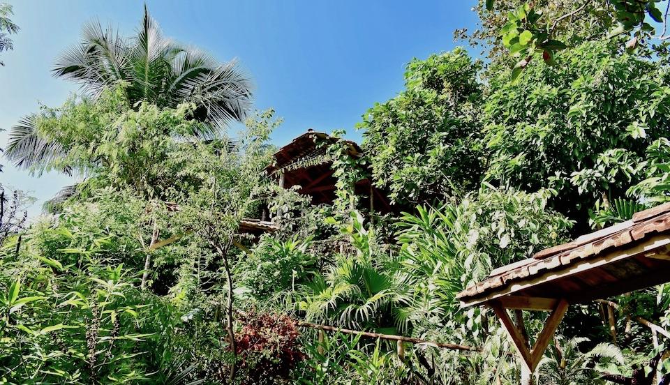 Villa Paradiso • Casa Particular • Baracoa Cuba • Garden Lookout Mirador