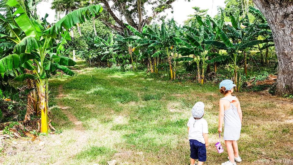 My Family Trip • Baracoa Cuba